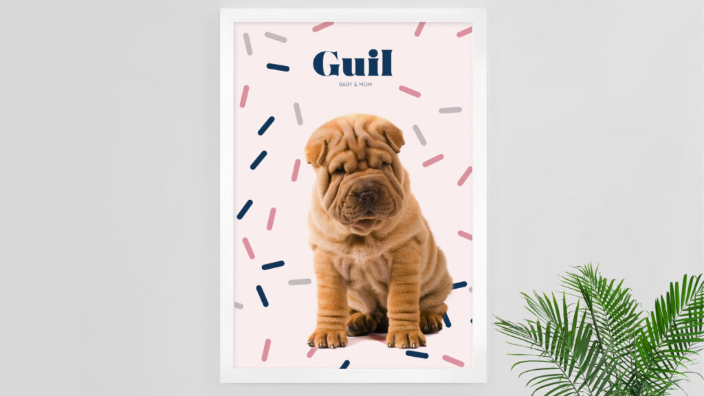 Logo, visual identity and Ecommerce – Guil — Alaska Agency